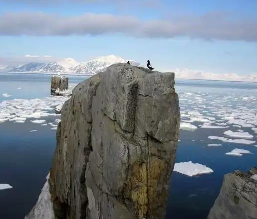 Есть работа на Шпицберген в Арктику до 2019 в туризме